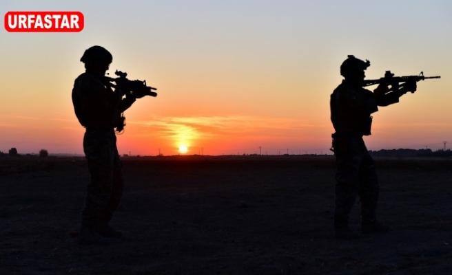 Teröristler Urfa'da teslim oldu