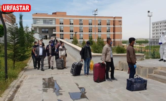 Irak ve Cezayir'den Şanlıurfa'ya Geldiler