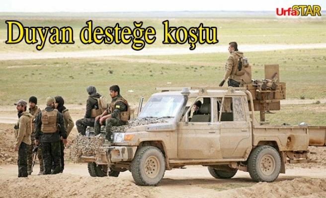Aşiretlerden PKK'ya ağır darbe