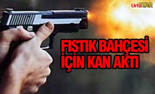 Bozova'da silahlar konuştu...