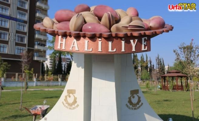 Urfa Fıstığı'nın heykeli dikildi