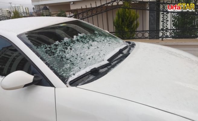 Urfa'da kar ve don etkili oldu