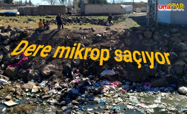 Viranşehir'de istenilmeyen görüntüler..