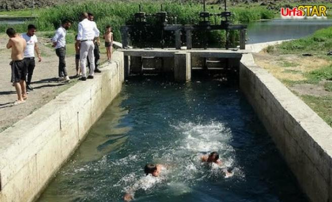4 Urfalı tarım işçisi Sulama kanalına düştü!