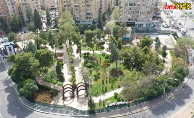 Ali Şelli parkı neden kapatıldı? Akibeti belli oldu