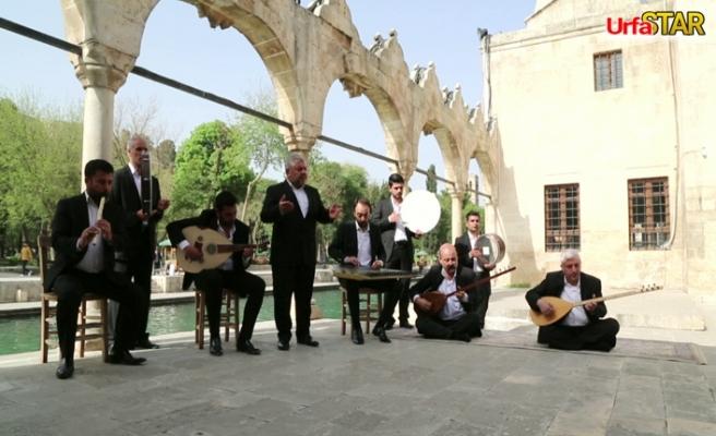 Haliliye Belediyesi etkinlikleri dijitale taşıdı