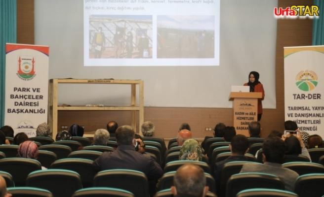 Urfa'da İpekböceği yetiştiriciliği semineri düzenlendi