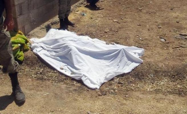 Suruç'ta yol kenarında ceset bulundu