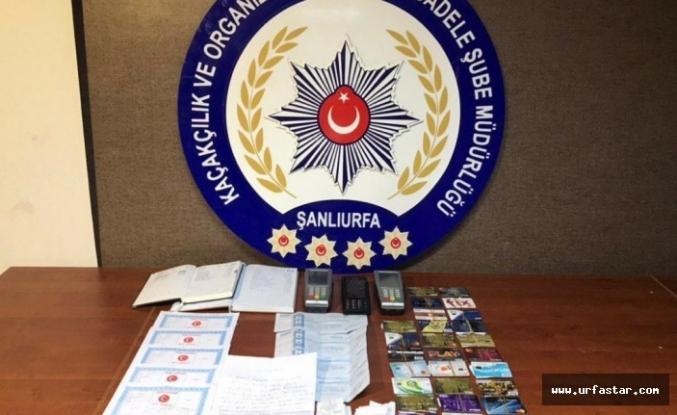 Urfa'da flaş operasyon!  8 kişi tutuklandı