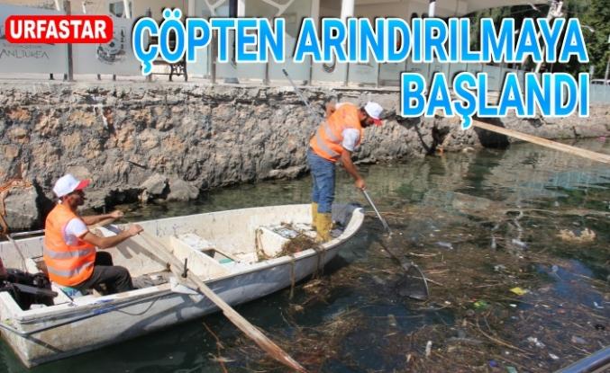 Büyükşehir Fırat'ı temizliyor...