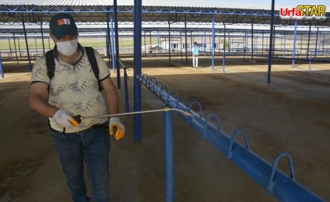 Siverek'te hayvan pazarı dezenfekte edildi