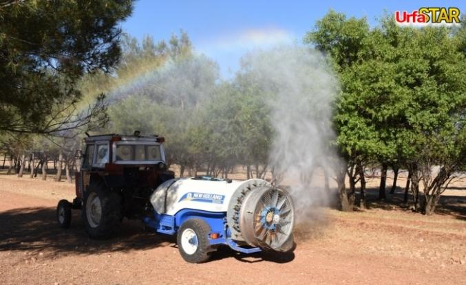 Hilvan Belediyesi ormanda ilaçlama çalışması başlattı