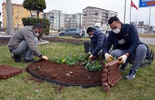 Siverek'te bahar hazırlıkları başladı